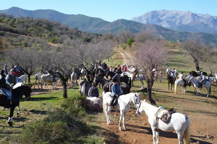 activiteiten op vakantie in Malaga Andalusië